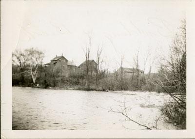 Thompson Family Farm