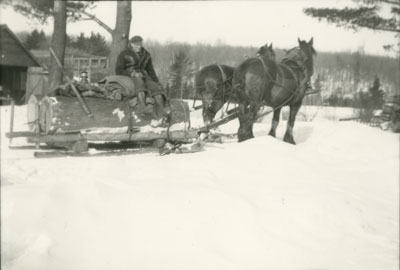 Henry Erven, with horse-drawn sleigh, circa 1940