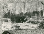 Postcard of Logging Near South River at the Turn of the Century