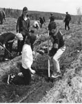 Julie Morris and Brian McNeil Planting Trees, Machar Township Agreement Forest, May 20, 1964, Photograph #2