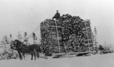 Two Horses Pulling Sleigh of Fire Wood