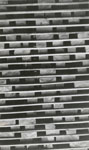 Three Inch Birch Lumber Stacked at the Standard Chemical Company's South River Lumber Yard