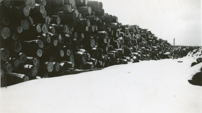Piled Longs from the Spring Cut
