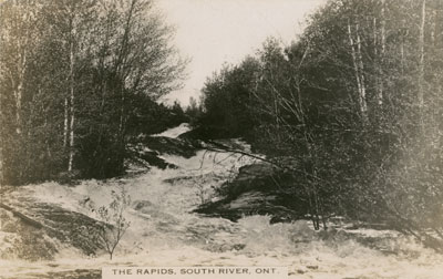 Postcard of the Rapids in the Forest, South River, circa 1920