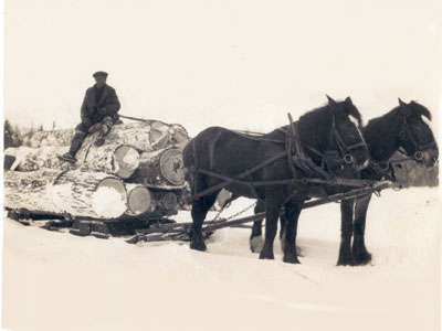 Teamster Sitting on Logs Being Pulled by Horses