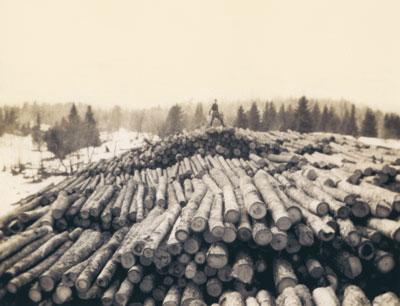 Log Dump for Iram Dahm's Saw Mill