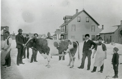 Cow in the Middle of a Snow-Covered Street, Sundridge, circa 1915