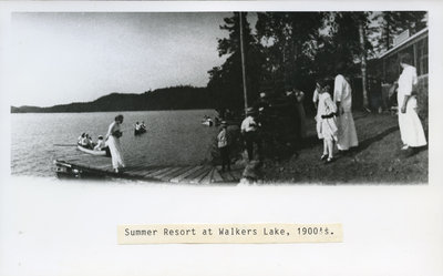 Summer Resort on Walker's Lake