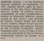 Martin, Andrew