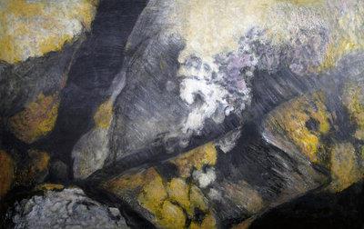 Haida Gwaii Lichen