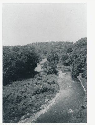 "View of Bronte Creek from ""Woodlands"", 1242 Bronte Road, ca1935"