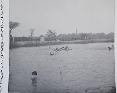 Shillum Farm Pond