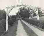 Driveway at Cedar Croft, 1965.
