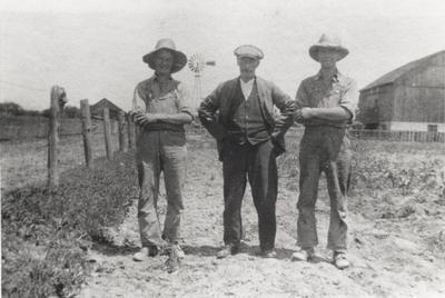 Cecil, Edward, and Homer McCann, 1918.