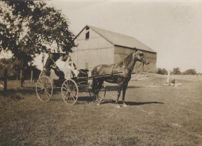 On the Ford Farm, Family in Buggy With Horse in Harness Beside Barn