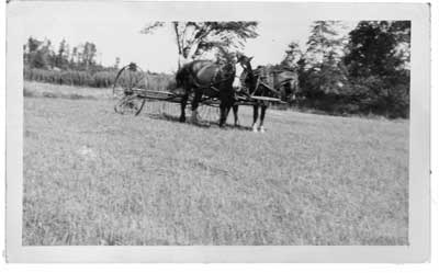 Haying, Thessalon Area, circa 1920