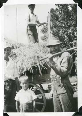 Group of Men Haying, circa 1940