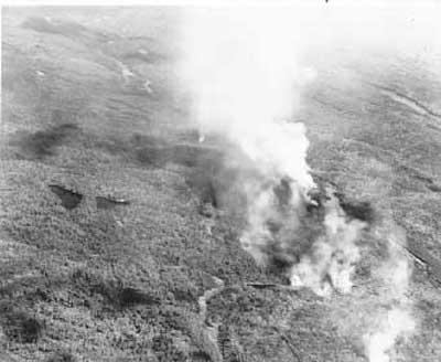 Forest Fire, circa 1948 (4/14)