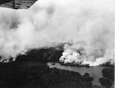 Forest Fire, circa 1948 (6/14)