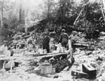Forest Fire, circa 1948 (10/14)