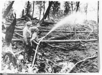 Forest Fire, circa 1948 (11/14)