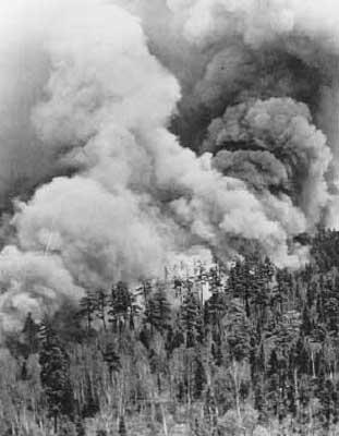 Forest Fire, circa 1948 (12/14)