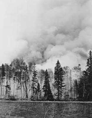 Forest Fire, circa 1948 (13/14)