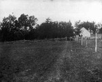 Old home (Alexander MacNeill's) - distant gable view, ca.1890's.  Cavendish, P.E.I.