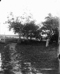 View of Cherry Tree Curve, old home, ca.1890's.  Cavendish, P.E.I.