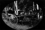 Joe (?), Stella Campbell, ca.1890's.  Park Corner, P.E.I.