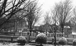 Front yard of Leaskdale Manse