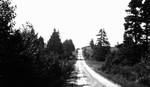 Road, Cavendish places, P.E.I.