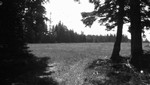 Webb's field, P.E.I.