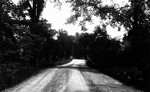 View down road in Glen Williams, Glen Williams, ON.