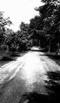 Road, Glen Williams, ON.