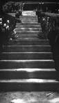 Stairs to Glen House, Glen Williams, ON.