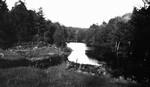 Credit River, Glen Williams, ON.
