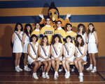Wilfrid Laurier University cheerleading team