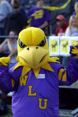 Golden Hawk at Wilfrid Laurier University homecoming game, 2003