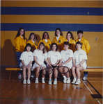 Wilfrid Laurier University women's tennis team, 1990-1991