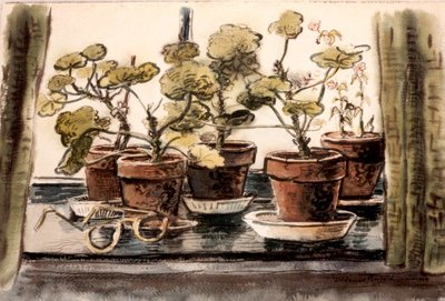 Geranium Plants with Glasses