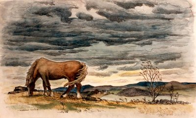 Horse on Windy Day