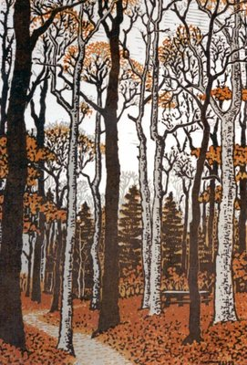 The Woods In November