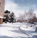 Wilfrid Laurier University campus