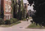 Man walking in front of Willison Hall