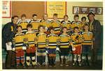 Une équipe de hockey / A hockey team
