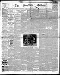 Stouffville Tribune (Stouffville, ON), April 10, 1891