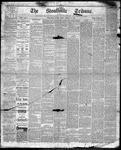Stouffville Tribune (Stouffville, ON), February 17, 1893