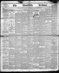 Stouffville Tribune (Stouffville, ON), December 14, 1893