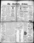Stouffville Tribune (Stouffville, ON), April 6, 1916